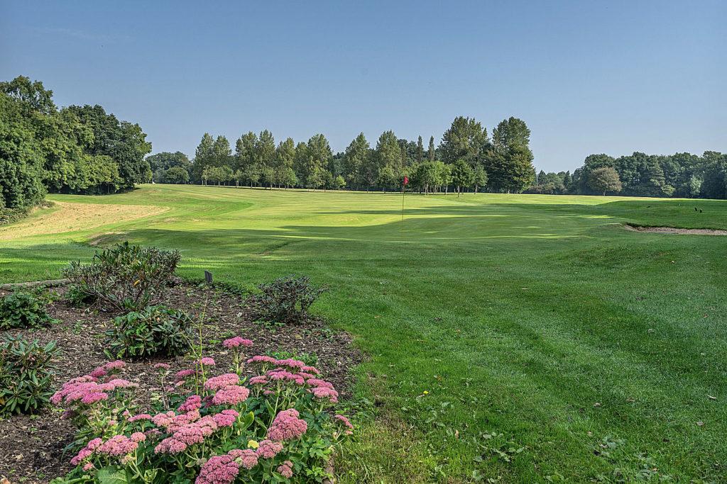 Alton Golf Club - 8th green