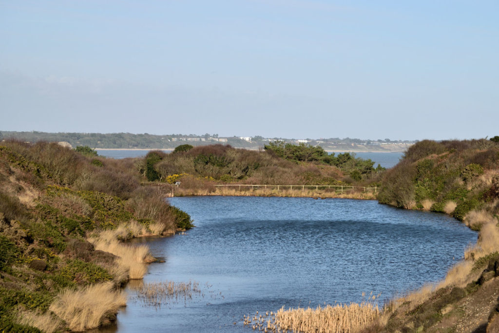 The old mill pond at Hengistbury Head