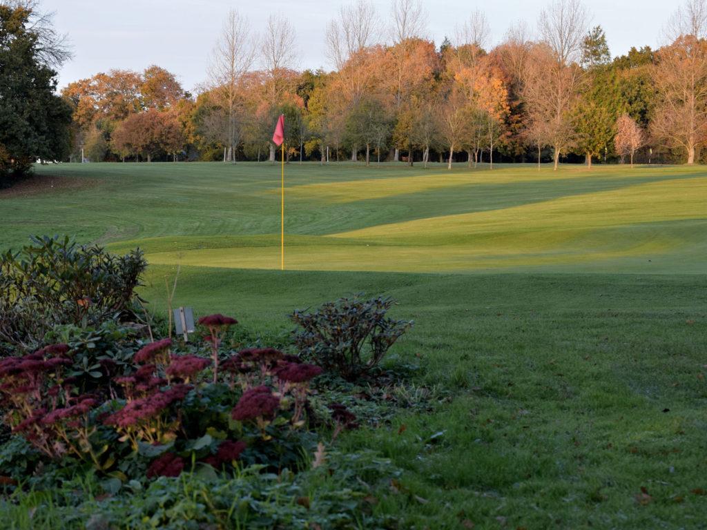 Alton Golf Club - 7th green